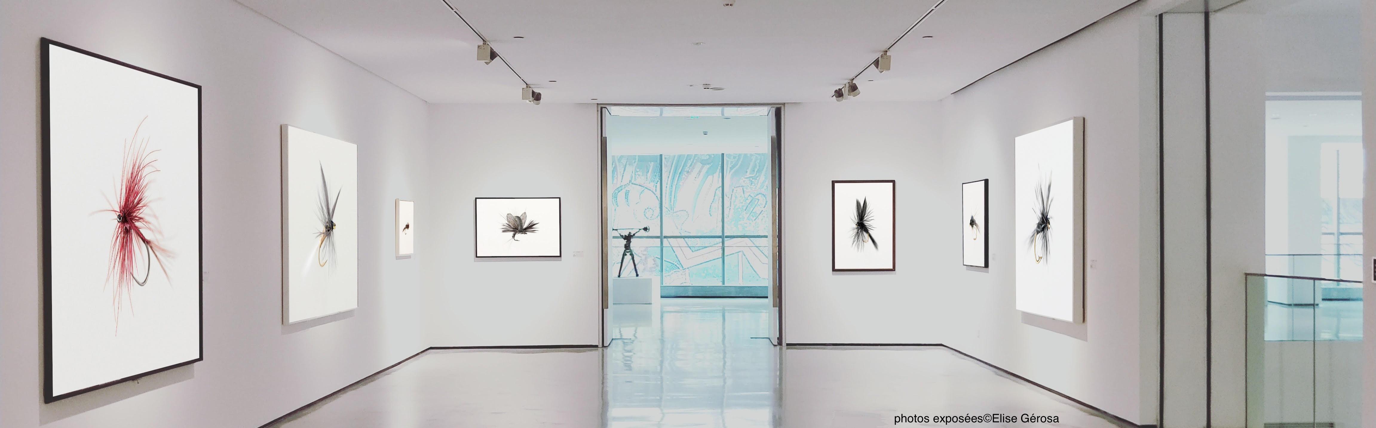 tirages Photokub-Art pour expo photo